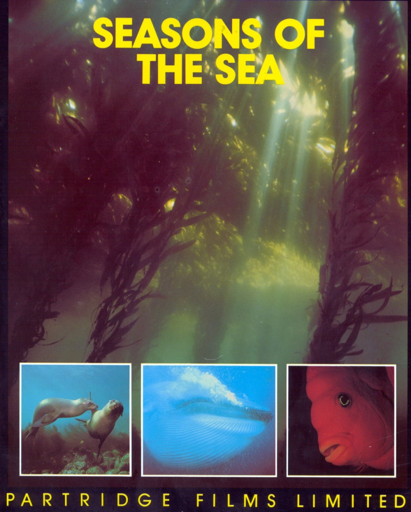 Seasons of the Sea 2